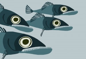 Bad fishes