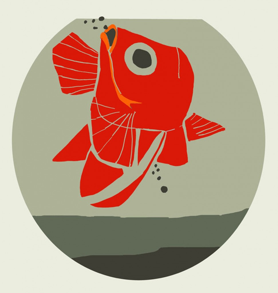 La vita di un pesce rosso