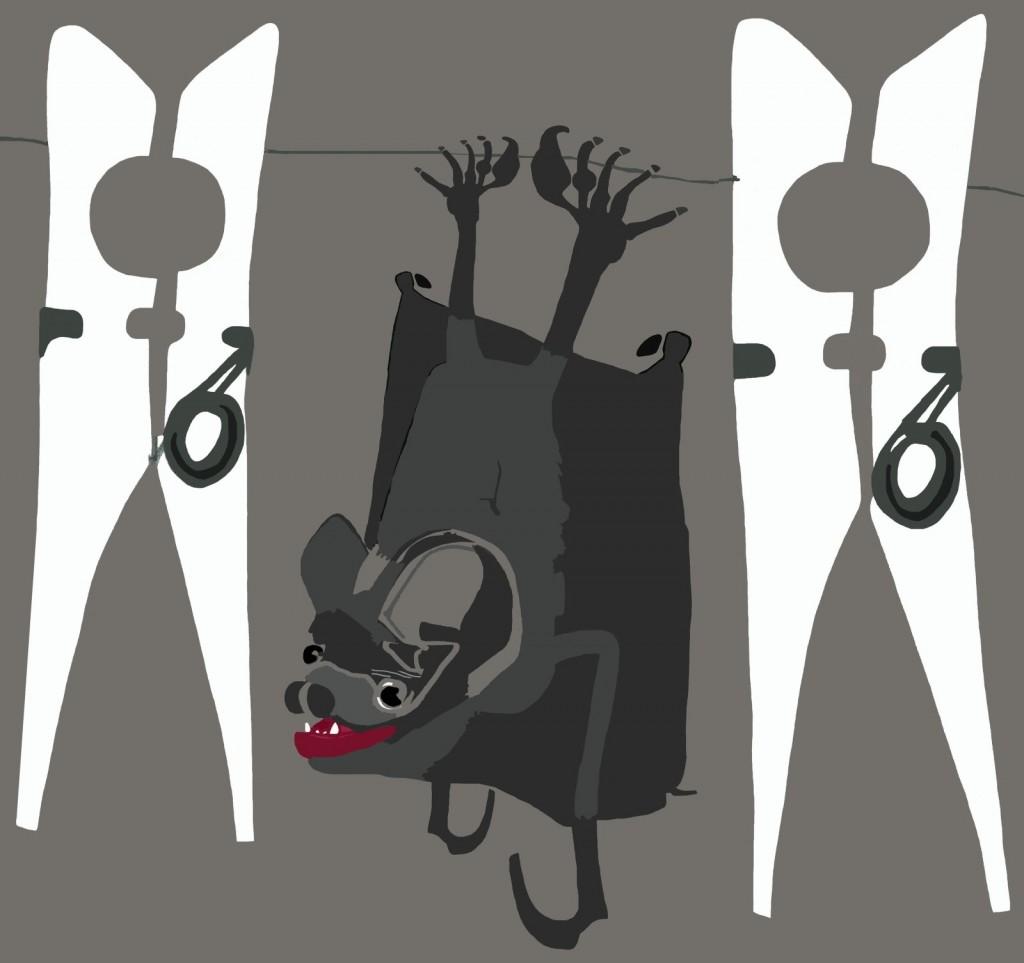 Pipistrellino appeso sul filo